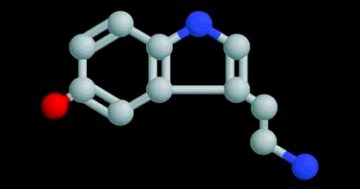 Serotonina, la sostanza del buonumore