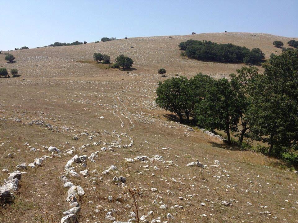 Monte Calvo: passeggiata sulla schiena del Gargano
