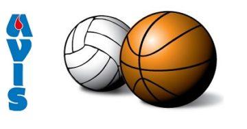 """Conclusa la 7ª edizione del Torneo """"Avis"""" di basket e volley"""