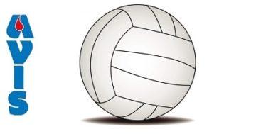 Concluso il torneo di volley 'Avis'