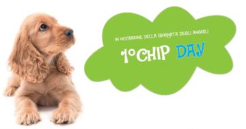 1° Chip Day