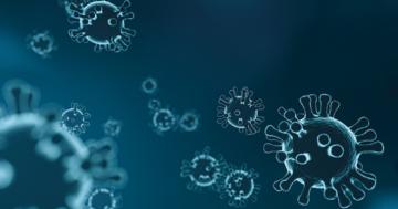 Coronavirus, tra divieti e buon senso
