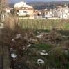 Via Foggia: dopo l'acqua e i topi ecco la monnezza